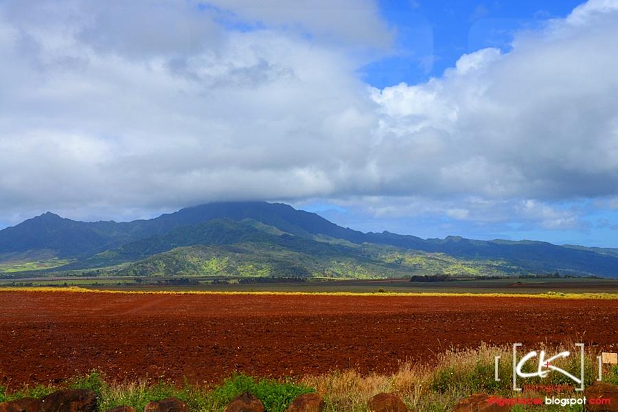 Hawaii_0163