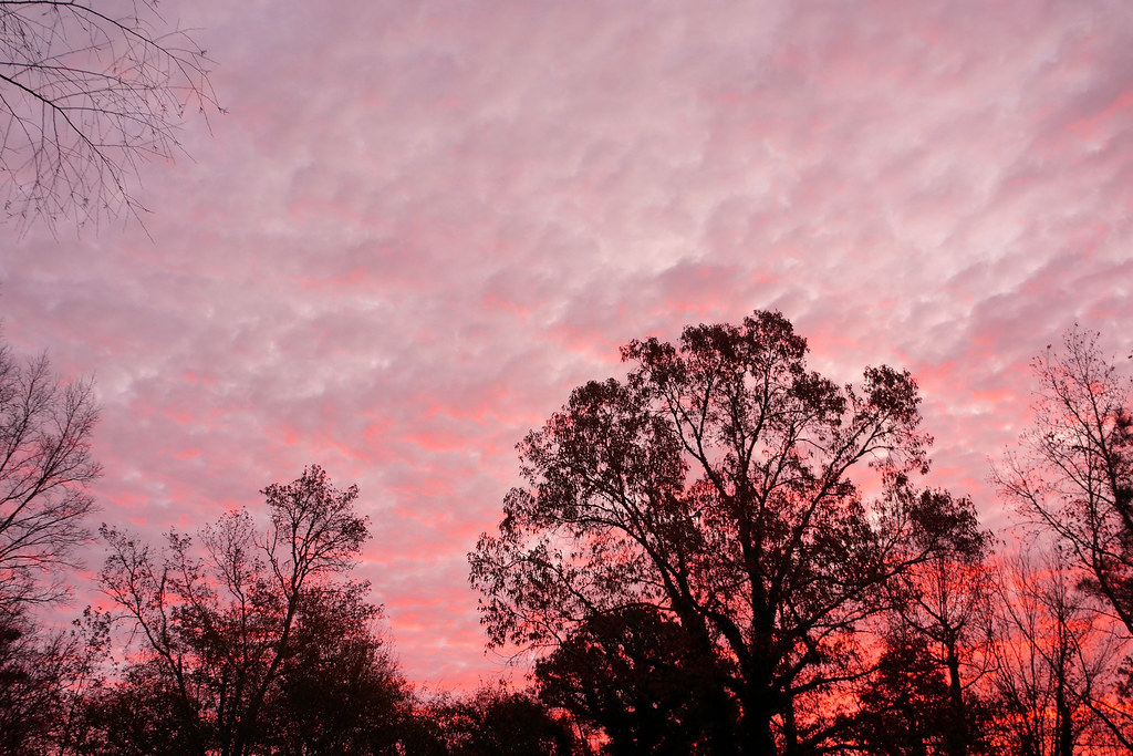 November Sunrise 1