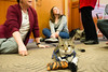 animal-therapy-1040107