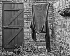 Washing Line No 1 - Jumper (Baines)