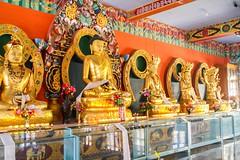 Namdroling Monastery,Bylakuppe