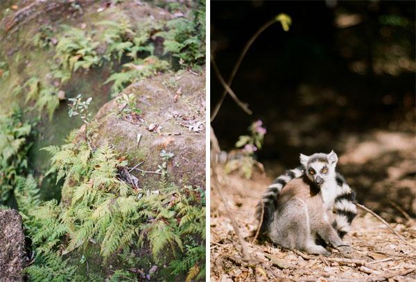 RYALE_Madagascar_Blog2_051