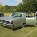 Warren Car Show 5