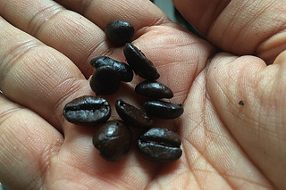 Santa Barbara Roasting Company -Coffee Beans