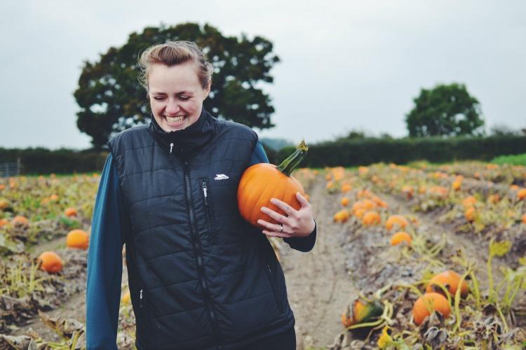 pumpkin clara
