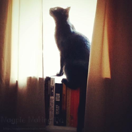 Olive on Books