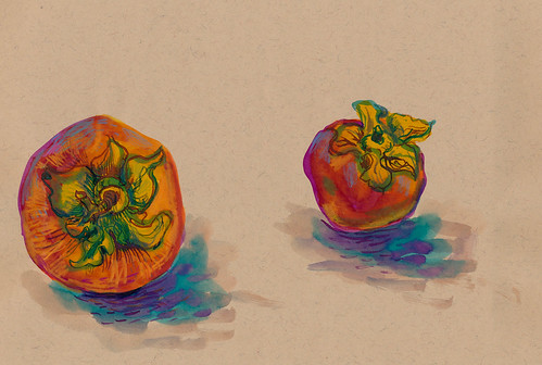 Sketchbook #93: Persimmons of November