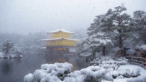 Into a magical world / Kinkaku( The Golden Pavilion) - Rokuonji-Temple