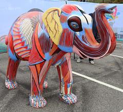 Herd of Sheffield 2016 – 29. Elephant Inside Out