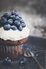 Dark Chocolate Blueberry Cupcake by locrifa