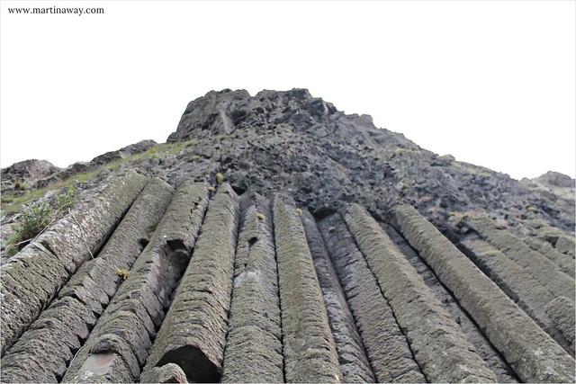 Giant's Causeway - l'Organo