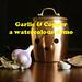 Garlic & Copper