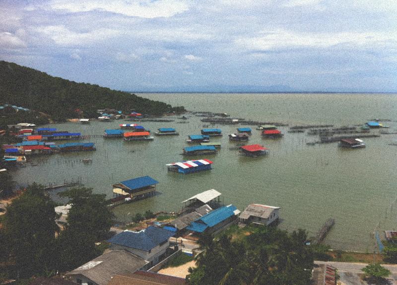 Southern Thai (13)