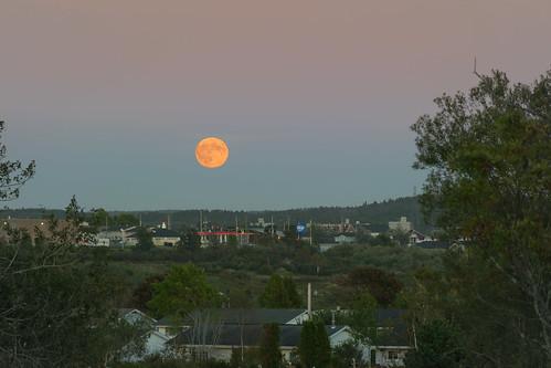 new moon saint john landscape rising blood outdoor dusk harvest super brunswick full newbrunswick rise mega saintjohn aftersunset eveining nbphoto nikond3300 d3300 supermoon supermegaharvestfullbloodmoon
