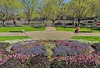 Spring In Melbourne25 - FLORAL CLOCK GARDEN LOOKING AT ST KILDA ROAD  27Sep2015 by JAYKAY144