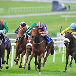 Tote Irish Cesarewitch 11th Oct 2015