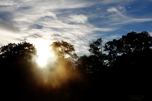 morning autumn light sky sun sunlight mist nature silhouette fog clouds sunrise riverbank shining thegalaxy