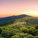 Roan Mountain Panorama by Malcolm MacGregor