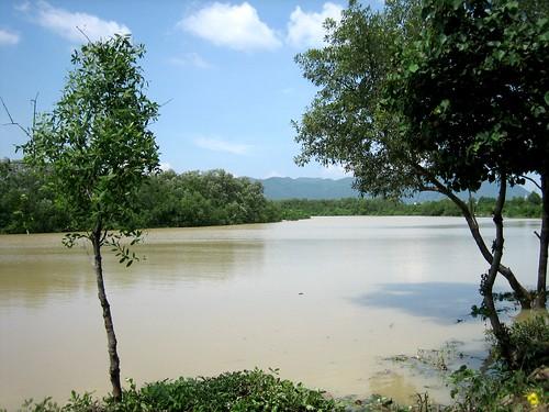 vietnam bàrịa dinhriver sôngdinh