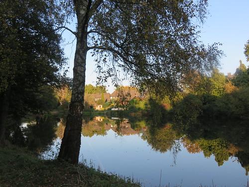 Spaziergang am Teich