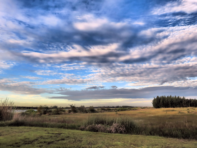 Wet prairie HDR 20151027