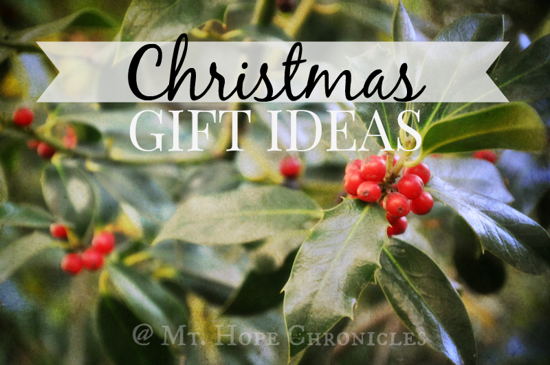 Christmas Gift Ideas @ Mt. Hope Chronicles