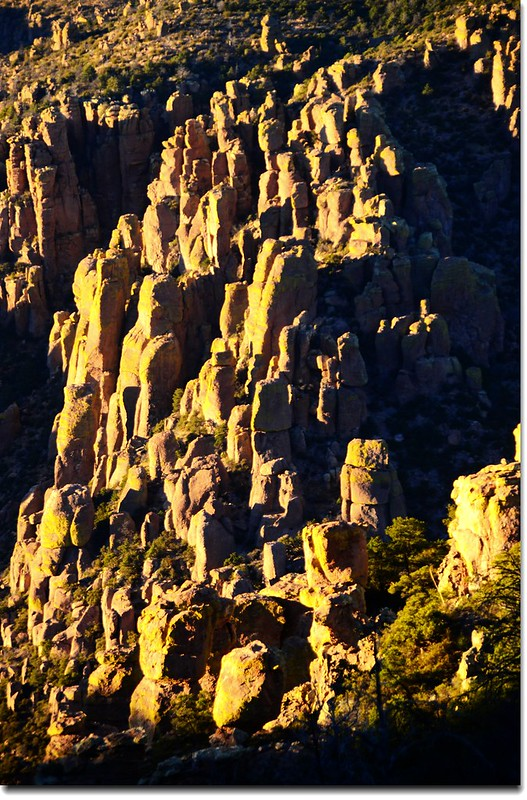 Chiricahua National Monument, AZ (26)