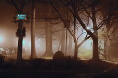 Greenway Terrace On A Foggy Night