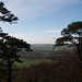View from Lewesdon Hill