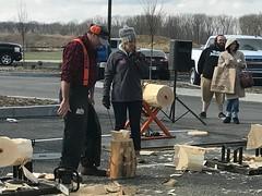 21 DT lumberjack demo