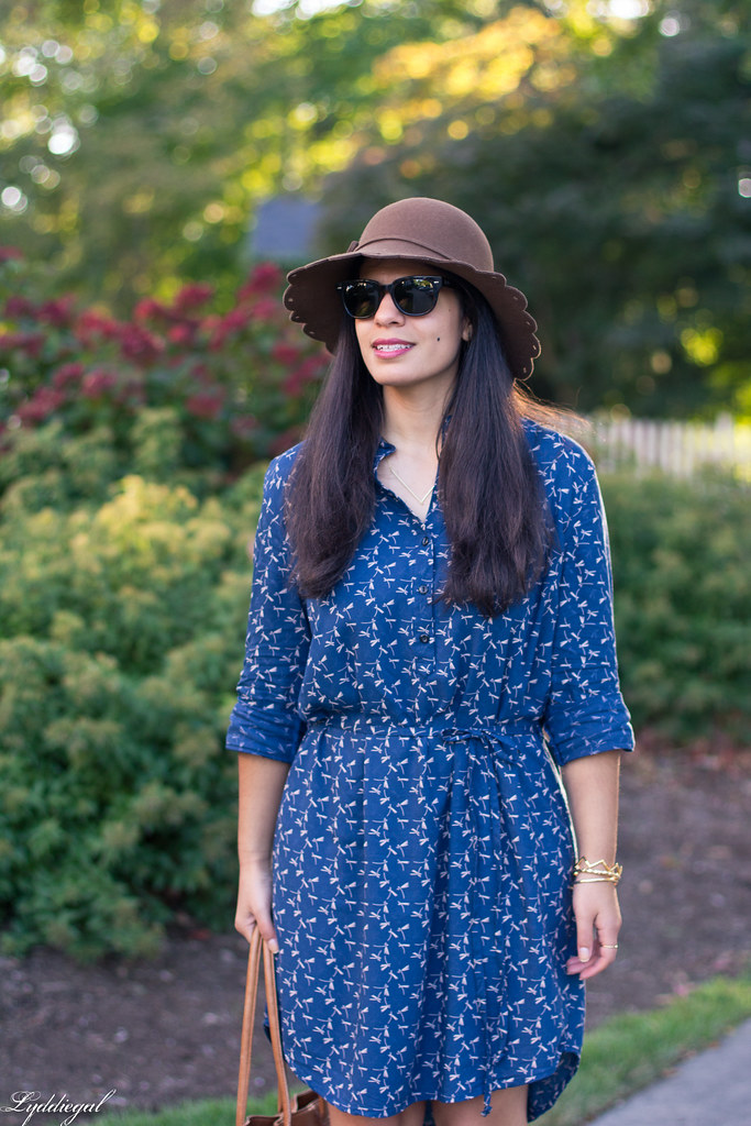 dragonfly print shirt dress, brown tote, scalloped brim hat-1.jpg