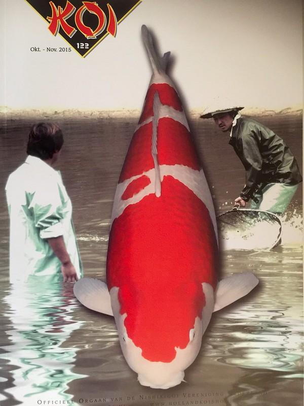 Cover Koi 122