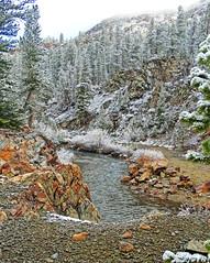 Frosty Morning, Tuolumne River, Yosemite 5-15