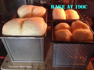 bread_brioche08