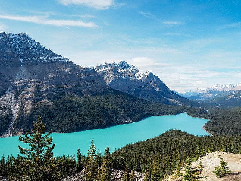Peyto Lake in Alberta, Canada