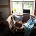 Sunny seat by polaris37