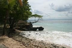 53 - Cayo Levantado (Bacardi Island / Bacardi-Insel)