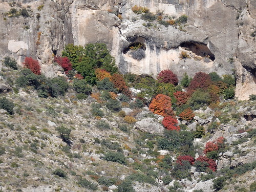 Guadalupe Mountains National Park - 2