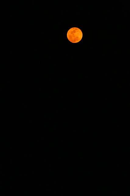 Blood Moon, Kande Beach.