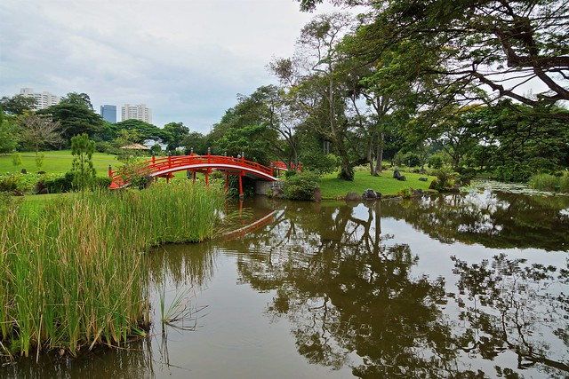 Lake and bridge in the Japanese Garden in Singapore