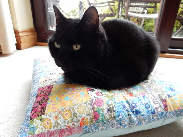 testing out the new cushion (5)