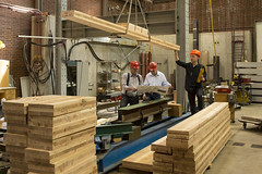 Timber research