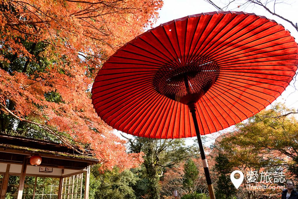 京都赏枫景点 神护寺 高雄茶屋 06
