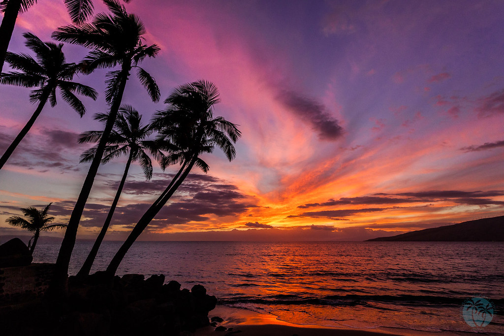 Kihei Maui Wowee Sunset | Last night's sunset was a show ...