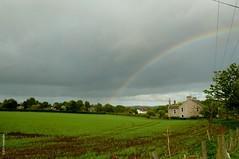 primary rainbow over green landscape