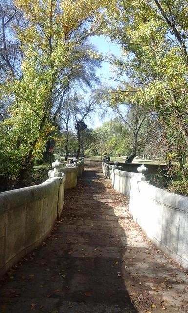 2015. Paseo por el Puente de la Culebra. ARBA. Semana de la Ciencia