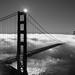 Winter morning fog over the Golden Gate Bridge by Nigel Danson