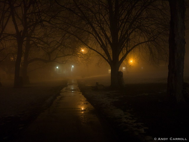 Victoria Park, fog