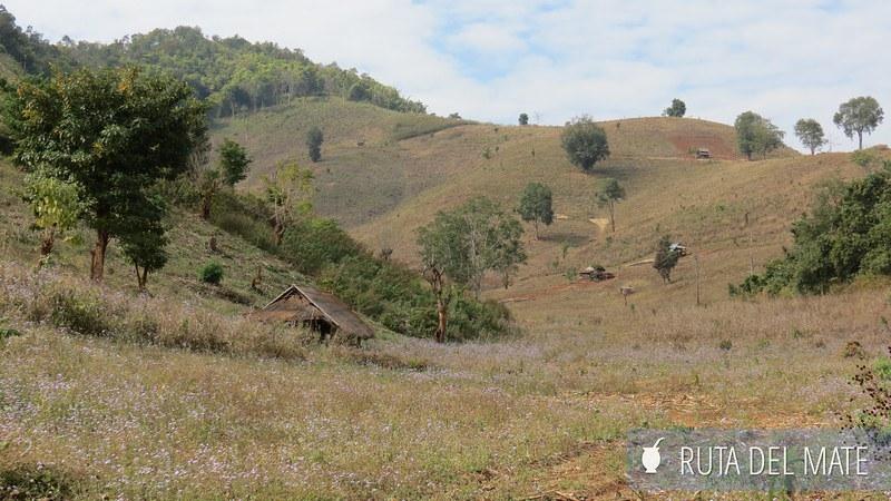 Hsipaw Pankam Myanmar (10)