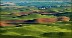 Palouse personals
